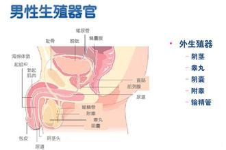 怀化性功能障碍标准化诊疗